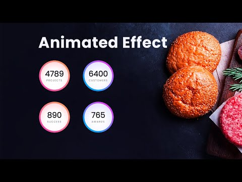 Modern HTML CSS Counter Up Animation effect – Latest animation effect in website [Video]