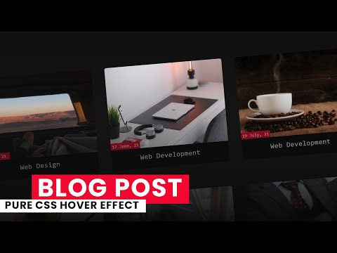Pure CSS Blog Post Hover Effect | Blog Post CSS Hover Effect [Video]
